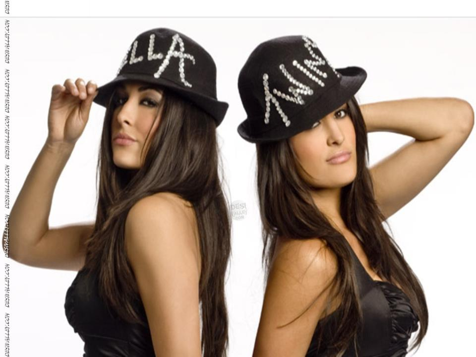 bella twins hd wallpapers hd wallpapers