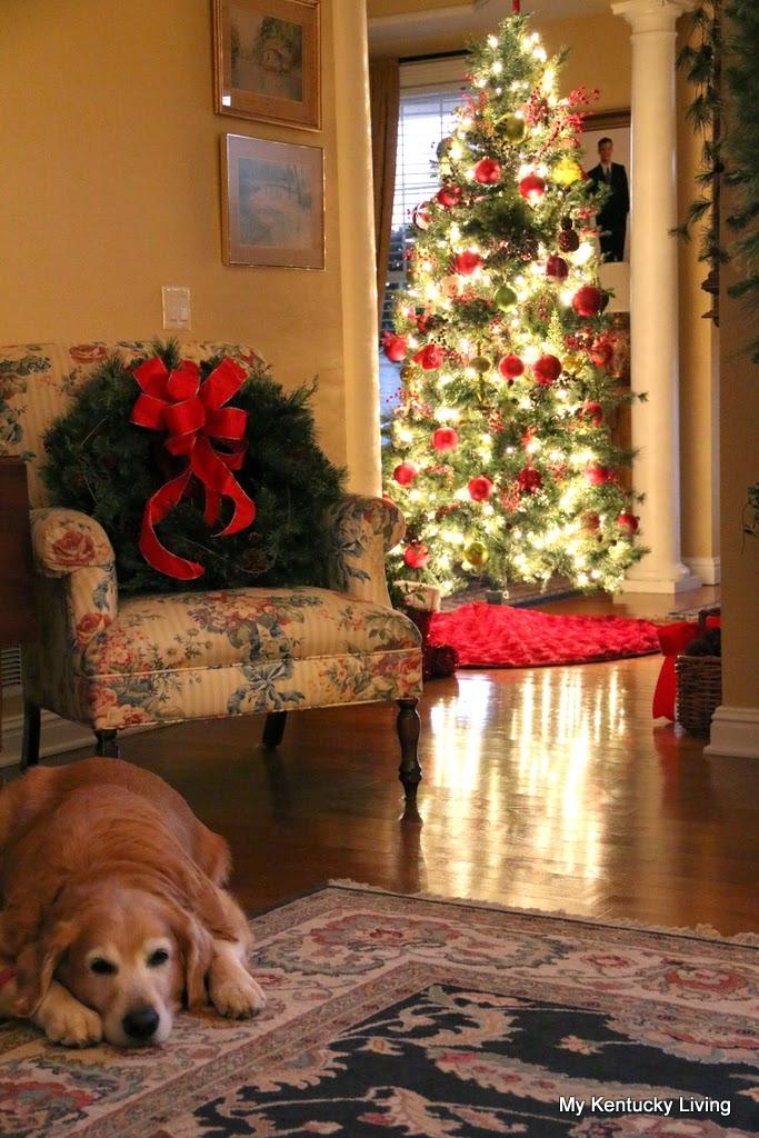 Looking Like Christmas - My Kentucky Living