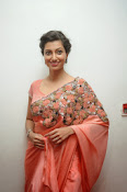 Hamsa Nandini photos at Legend audio-thumbnail-17