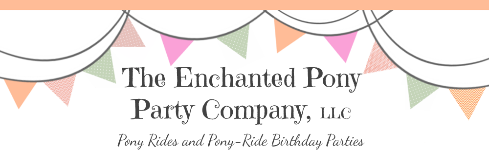 The Enchanted Pony Party Co.