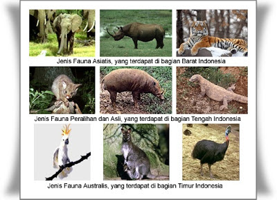 Flora dan Fauna: Persebarannya di Wilayah Indonesia