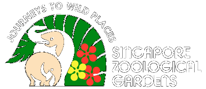 Singapore Zoo cheap tickets