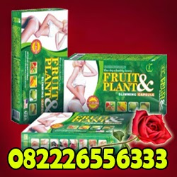 Pelangsing Badan Alami – Obat Diet Herbal – FRUIT AND PLANT