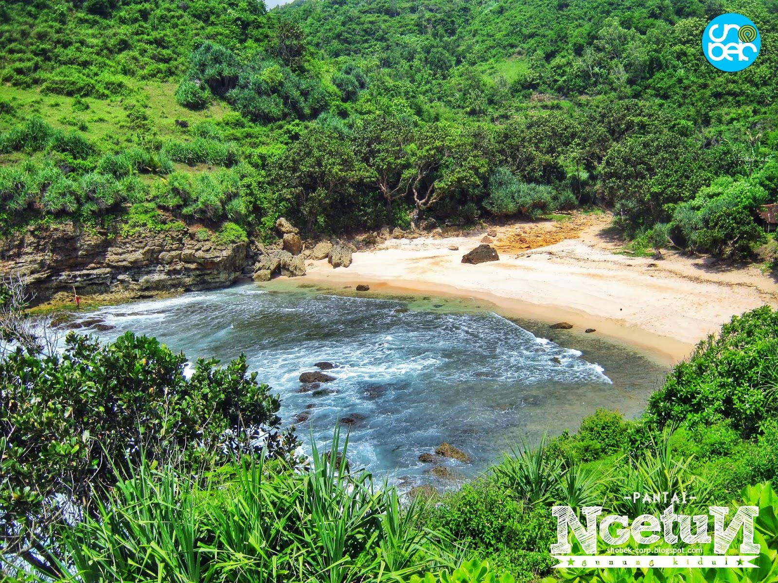 [Ajakan] Camping di Pantai Ngetun, Tepus, Gunungkidul 5-6 ...