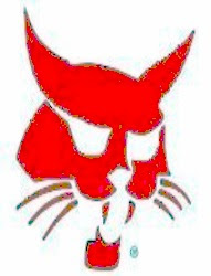 fisabilillah kucing merah