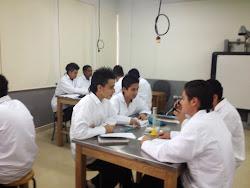 Práctica de laboratorio de química