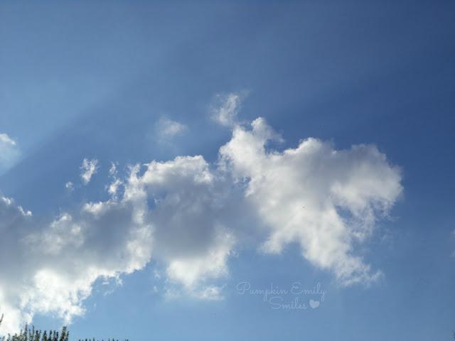 Clouds that look like a giraffe or a Sauropod