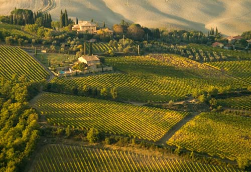 Tuscany fields photo