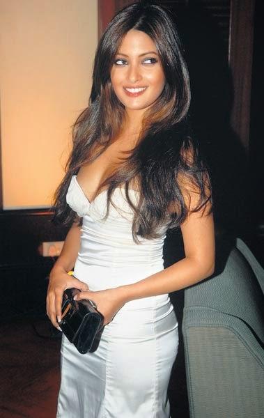 Riya Sen showing hot body in tight dress
