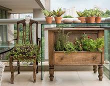 A Magia das Ervas na Cozinha