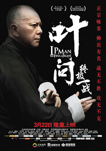 Ver Ip Man: The Final Fight (2013) online