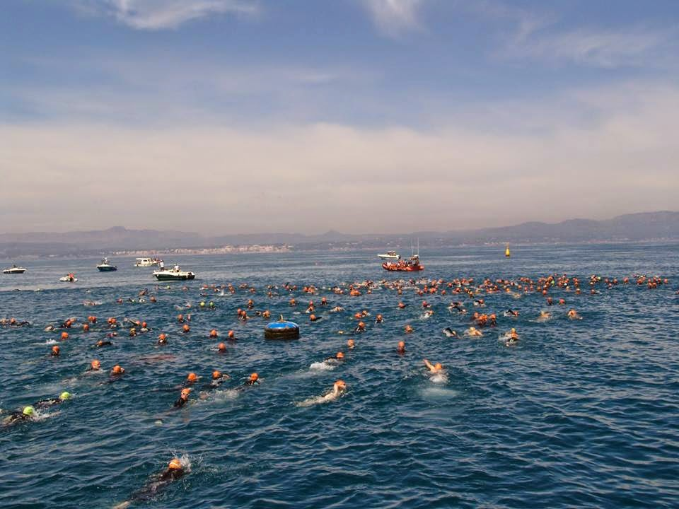 tuna race balfego swim