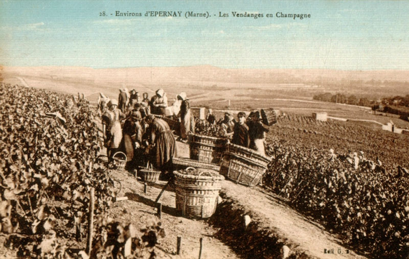 Amicarte 51 reims epernay esplanade charles de gaulles for Plan d epernay
