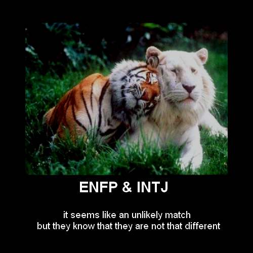 Enfp infj dating challenges
