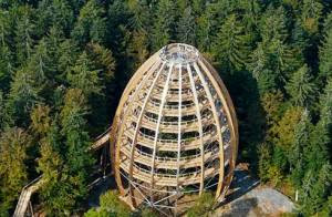 Menara Observasi Baumwipfelpfad, Jerman