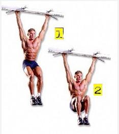 Работающие мышцы при подъеме ног в висе будут: нижняя часть пресса, а также