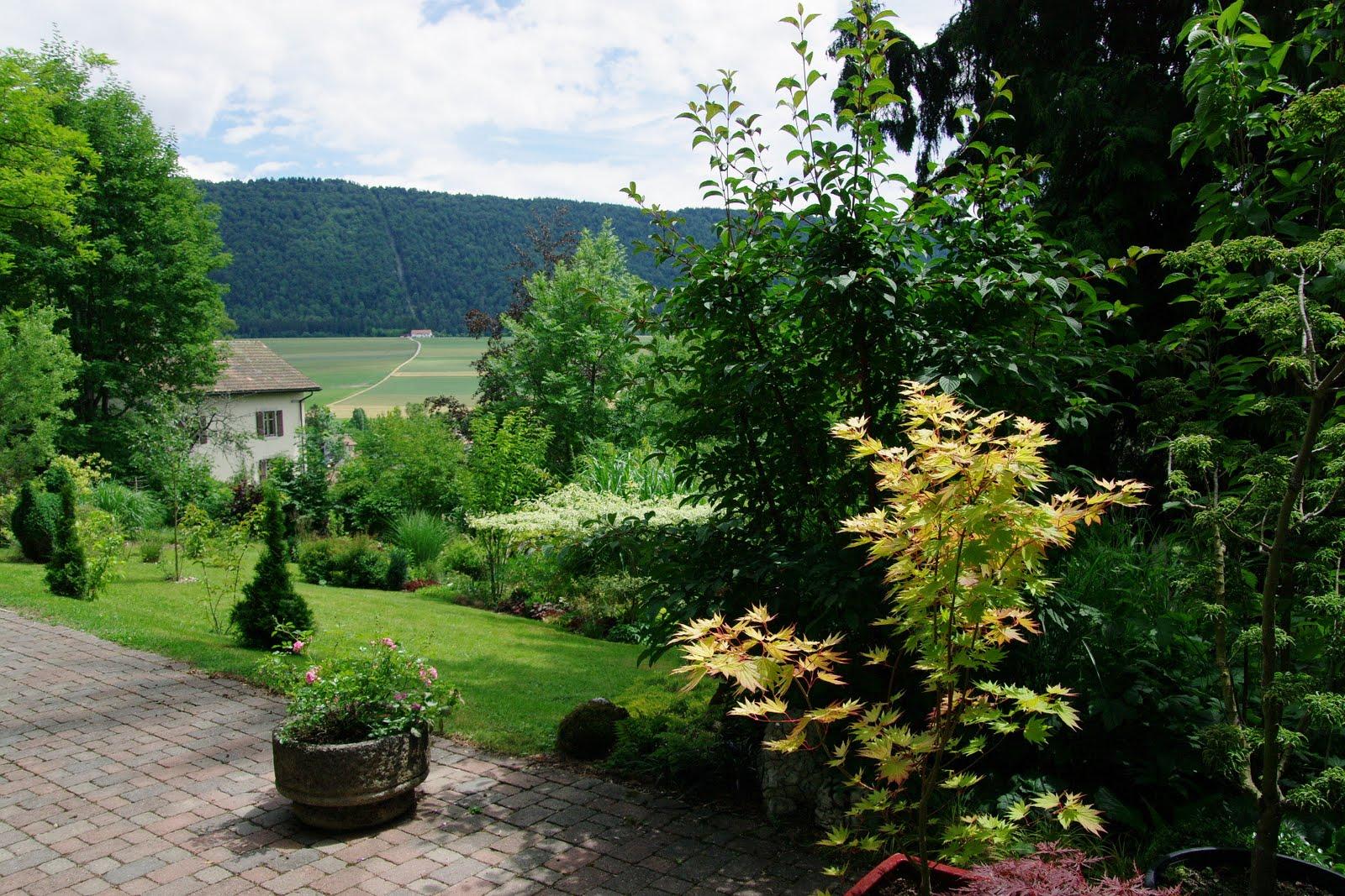 Le jardin boultois chez miss canthus en suisse for Le jardin geneve