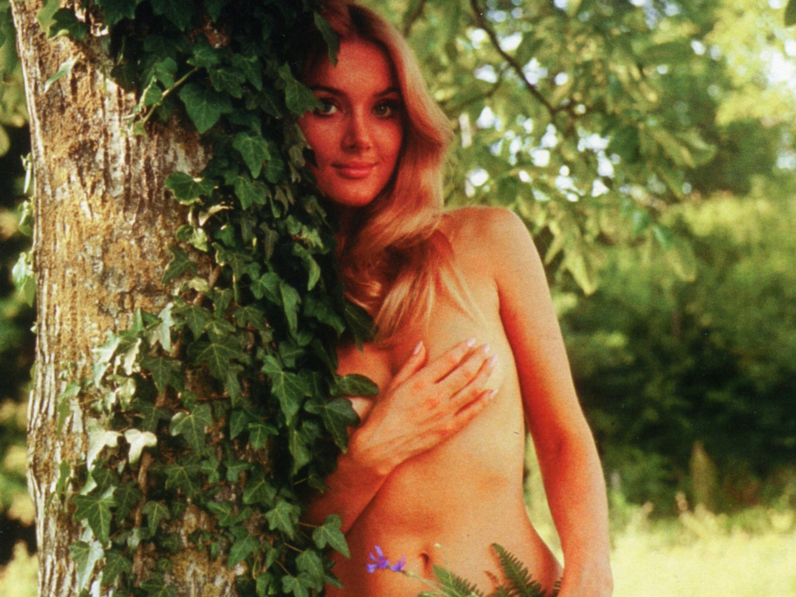 barbara bouchet gangs of new york