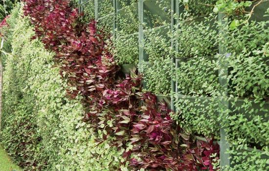 jardim vertical bloco : jardim vertical bloco:Architetando Verde: Como fazer um jardim vertical