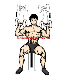 Tips Body Tegap -Panduan Menggunakan Dumbbell-