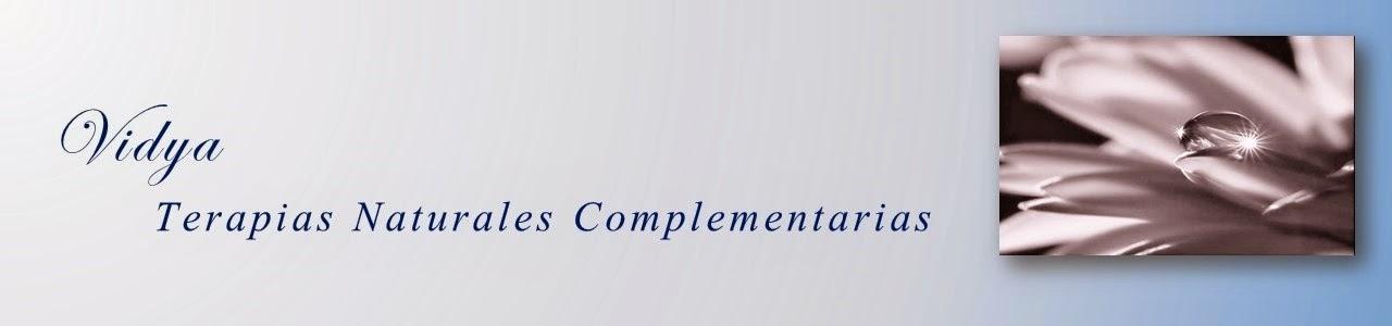 Vidya, Terapias Naturales Complementarias