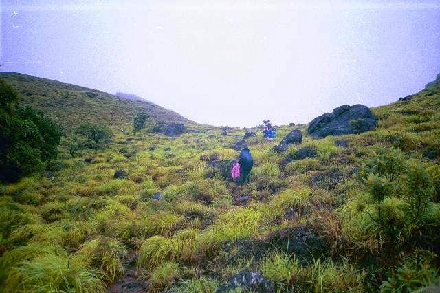 Brahmagiri Hills Trekking Near Coorg