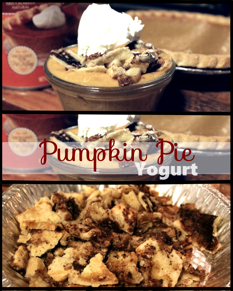 Featured Scrapality shared her Pumpkin Pie Yogurt at One More Time Events.com