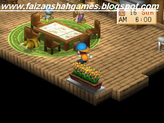 Harvest moon back to nature cheats