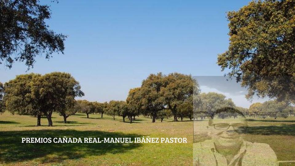 PREMIOS CAÑADA REAL MANUEL IBÁÑEZ PASTOR