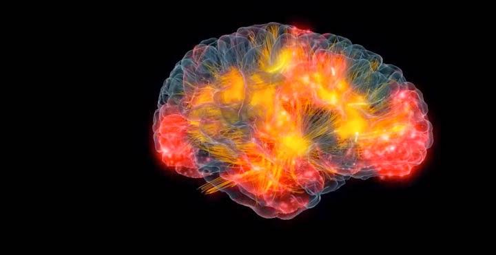 نشاط الدماغ