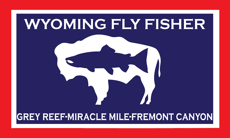 Wyoming Fly Fisher