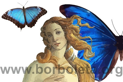 Morpho - Borboleta Azul