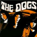The Dogs!