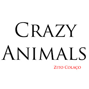 Blog Crazy Animals
