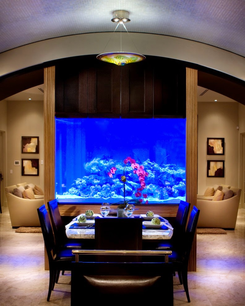 ديكور بأحواض الأسماك