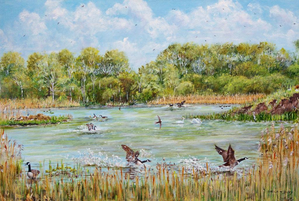 Piper Marsh Spring