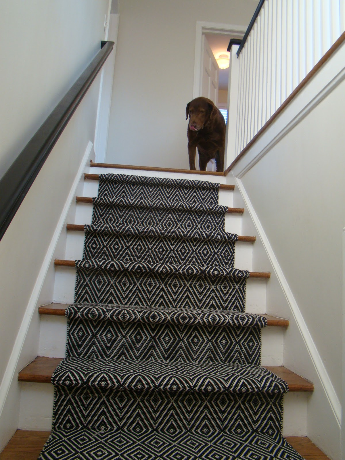 oh you shouldn't have a stair runner just for me. gretchen opgenorth voilaand another decision