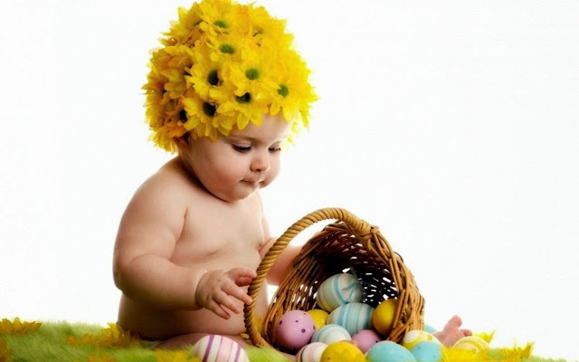 112222-Baby And Egg Basket HD Wallpaperz