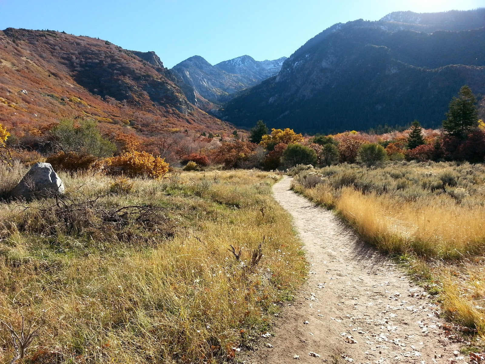 "Taking the trail less traveled: how local trails go beyond the ""classics"". By @ginabegin"
