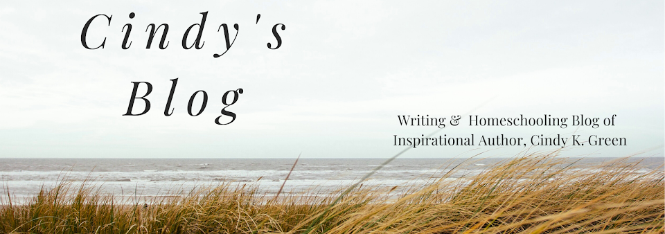 Cindy's Blog