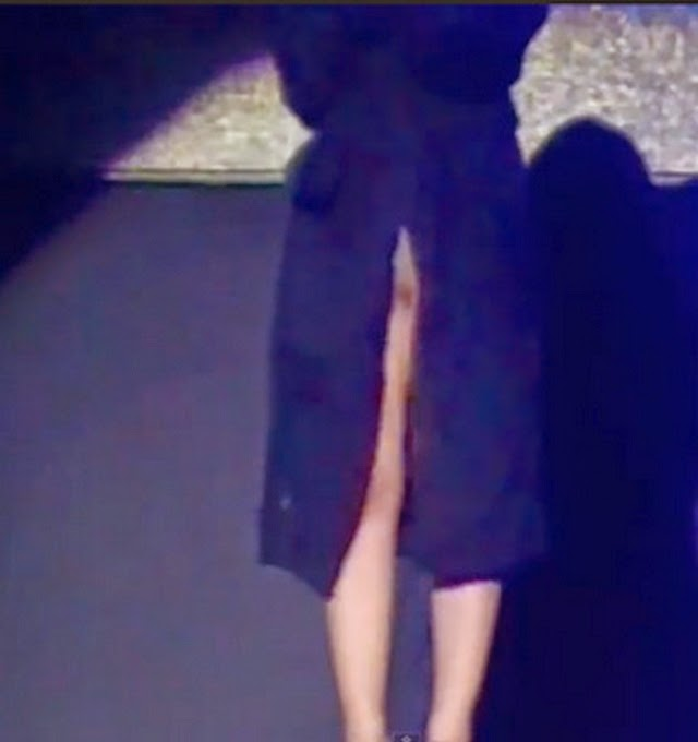 Laura Pausini si deja ver desnuda en concierto