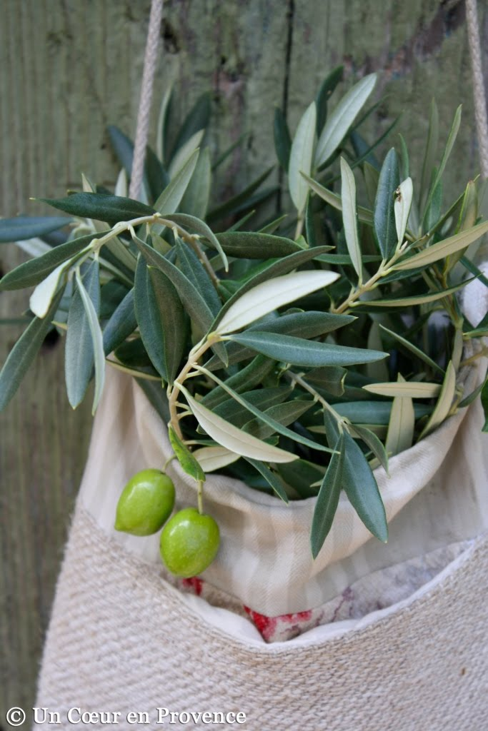 Some olive branches in a bag, by Si un mas m'était conté