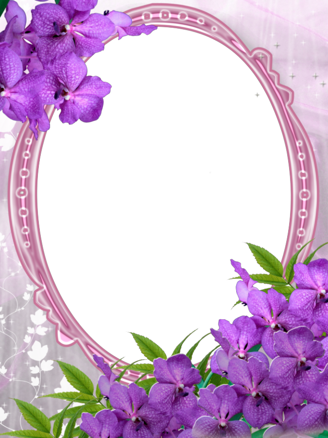 Transparent Purple Flower Frame