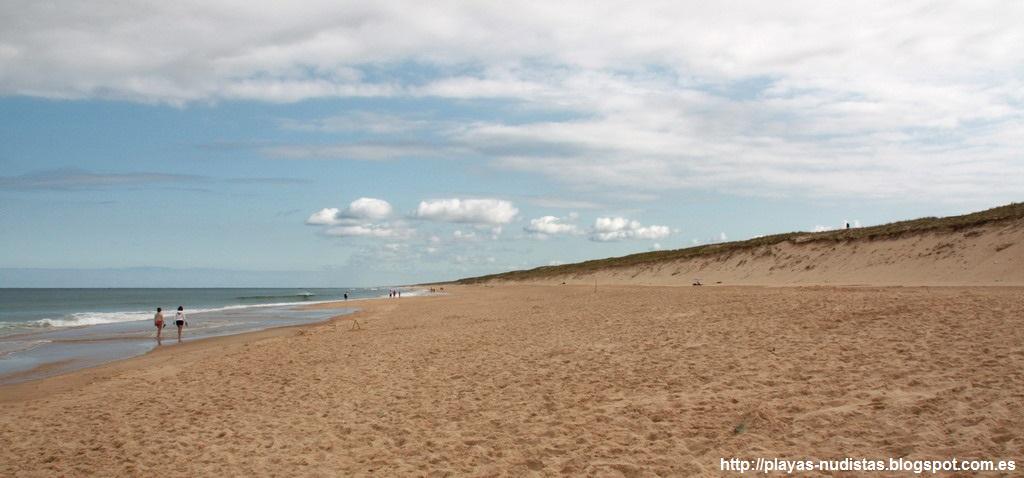 Nude beach Contis (Landes, Aquitaine, France)