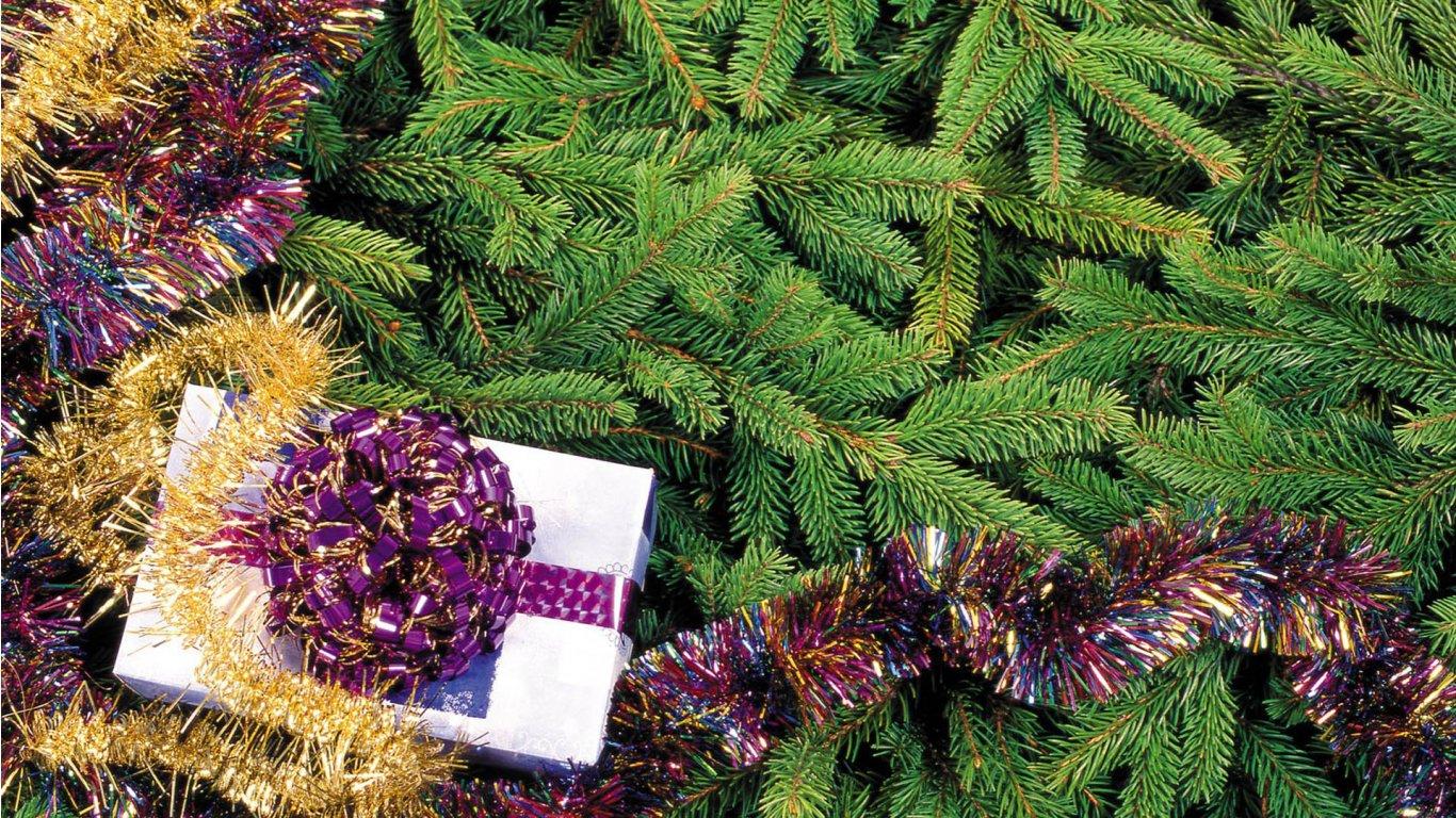 http://1.bp.blogspot.com/-OgSZja-8FCs/TeCx-hHocRI/AAAAAAAADvA/5uFkZODxqq8/s1600/Christmas%2BTree.jpg