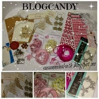 Susanne Halseth's Blogcandy!