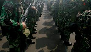 TNI Netral di Pemilu & Pilpres 2014