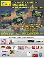 X concurso-exposición internacional ACVAM 2013