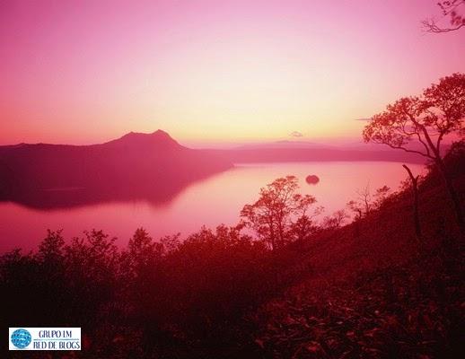 Naturaleza en Color Rosa