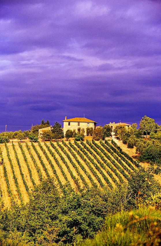 'Strada Chiantigiana' between Siena and Castellina in Chianti, Tuscany, Italy photo